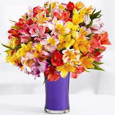 flowers for cheap flowers free clip free clip on clipart library
