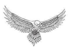 eagle illustration by becky brock tattoos pinterest eagle