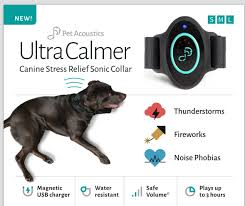 9 great pet tech gadgets for your four legged furry loved ones