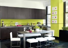 cuisine verte anis cuisine grise mur vert anis mesmerizing salle à manger