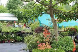 Unique Garden Decor Garden Decor And Displays At Dragonfly Farms Close The 2011