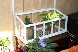 building a terrarium an indoor mobile garden fit for kids