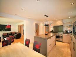 designer open plan kitchen blue kitchen walls blue open concept