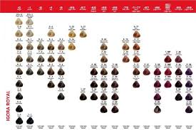 igora hair color instructions igora royal color chart 1 cendre silver ash 2 ash blue ash