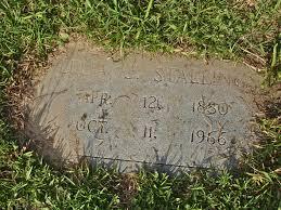 Princeton Cemetery July 2015 Wheretheliliesbloom