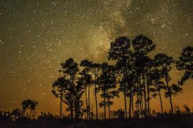 Georgia Cheap Ways To Travel images Ways to enjoy the stars at georgia 39 s new dark sky park official jpg