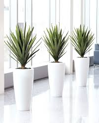 artificial plants plants for home decor artificial plants for home decor online