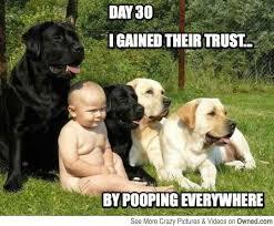 Baby Poop Meme - 11 comments that make dog owners cringe barkpost