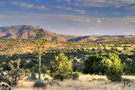 Texas scenery images 10 towns in texas with breathtaking scenery jpg