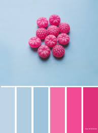 pink color schemes blue and pink color scheme fabmood wedding colors wedding