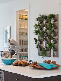Indoor Kitchen Garden Ideas Kitchen Wall Herb Garden 5 Indoor Herb Garden Ideas Decorating And