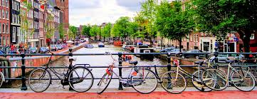 hertz australia nissan qashqai car rentals in amsterdam from 7 day search for cars on kayak