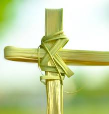 palms for palm sunday where do the palms for palm sunday come from easter lent news