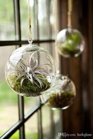 hanging air plant terrarium moss succulent planters wedding
