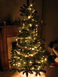 www christmas tree shop com part 49 christmas tree shops