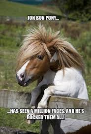 Horse Birthday Meme - funny horse birthday pictures picsgalary