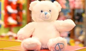 build your own teddy teddy garden in auckland auckland groupon