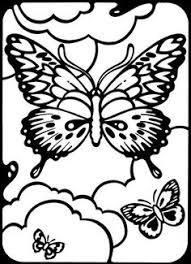butterfly picture label anatomy butterflies