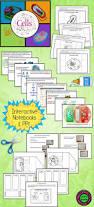137 best cells images on pinterest