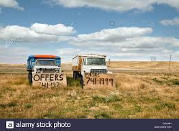 trucks for sale old trucks for sale in a field stock photo royalty free image