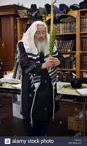 prayers for sukkot a religious holding an esrog lulav at morning sukkot prayers