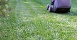 how to lose weight by mowing the lawn livestrong com
