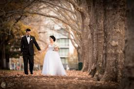 wedding cinematography 10 best venus photography images on