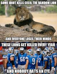 Lion Meme - the 25 funniest detroit memes that are too real