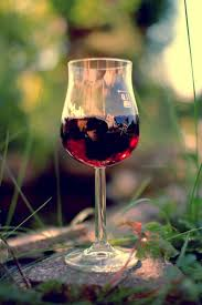 173 best wine else images on pinterest wine cheese wine time