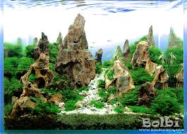 nano aquascape nano aquascape devil s canyon bolbi aquarium
