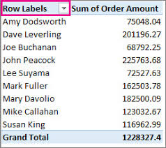 sort data in a pivottable or pivotchart excel
