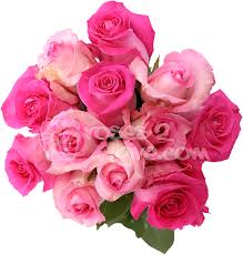 sensual pink roses for wedding bouquets online exclusive