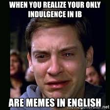 Meme In English - when you realize your only indulgence in ib are memes in english