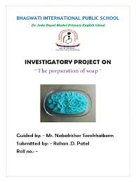 soap making project for cbse class 12 soap detergent