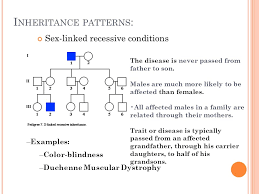 Does Colour Blindness Affect Males Or Females More P Edigree A Nalysis Have You Ever Seen A Family Tree U2026 Do You Have