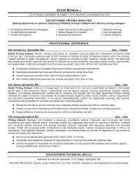 pricing analyst resume example sample of professional resumes