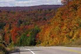 ontario highway fall colours algonquin provincial park photo