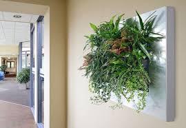 living walls milwaukee wi living wall planter milwaukee
