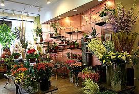 flower shops in flower pictures flower shops