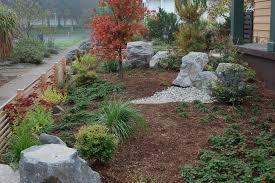 drought tolerant plants landscape design lightandwiregallery com