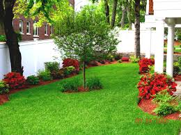 Light On Landscape Lawn Garden Small Backyard Landscaping Ideas Home And Design