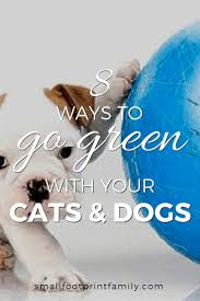 8 ways to go green with your pet small footprint family