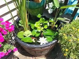 Container Water Garden Ideas Water Garden Planter Bird Bath Water Garden Water Garden