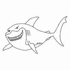 great white shark coloring pages regarding inspire to color an