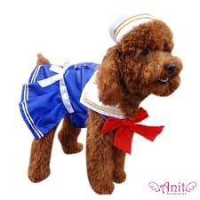 Funny Dog Halloween Costumes 60 Funny Dog Costumes Images Animals Pet