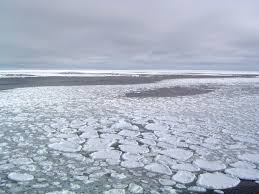 quick facts on arctic sea ice national snow and ice data center