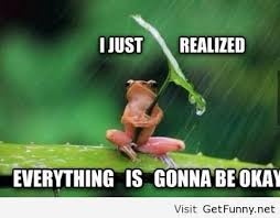 Uplifting Memes - i just realized ok frog i understand funny pictures funny