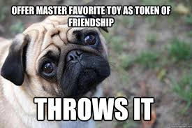 First World Memes - the funniest first world dog problems memes