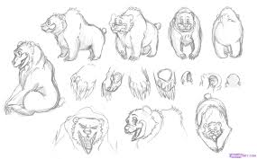 how to draw a cartoon bear step by step cartoon animals animals