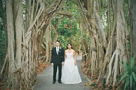 Botanical Gardens Sarasota Fl Selby Botanical Gardens Sarasota Weddings Choreographed